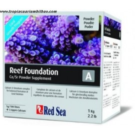 REEF FOUNDATION A - RED SEA